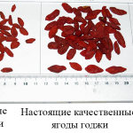 качественные ягоды годжи