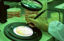 Как заражаются вирусом папилломы