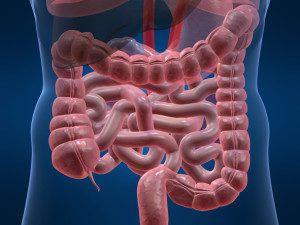 Атония кишечника лечение