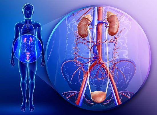 Что такое метастазы при раке?