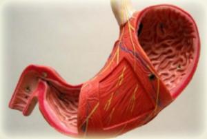 Рак желудка - симптомы