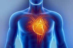 Липома кардиодиафрагмального угла справа
