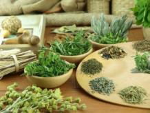 Какие помогают травы от рака?