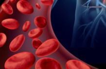 Миелома крови: какой прогноз и можно ли вылечиться?