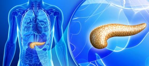Липоматоз поджелудочной железы: лечение народными средствами