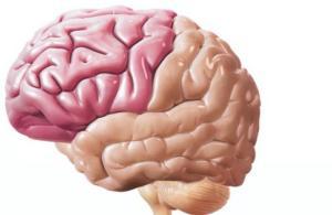 Стимуляция головного и спинного мозга