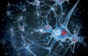 Нейродегенеративные заболевания. Симптомы