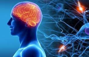 Нейродегенеративные заболевания. Методы лечения