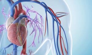 Лечение кардиомиопатии