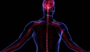 Проблемы с нервной системой