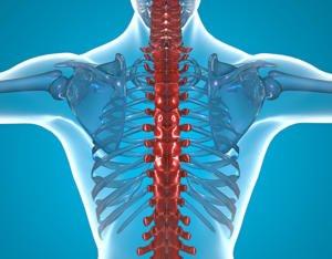 Миелография позвоночника: лечение