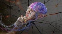 Заболевание мотонейрона