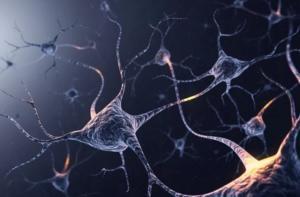 Заболевание мононейрона: причины и симптомы