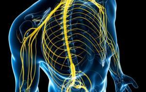 Расстройство нервной системы
