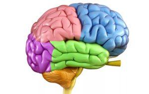 Абсцесс головного мозга: причины