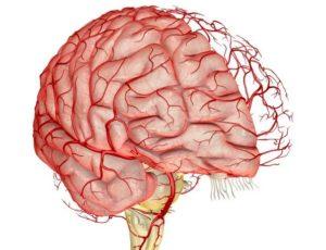 Кортикобазальная дегенерация головного мозга - причины