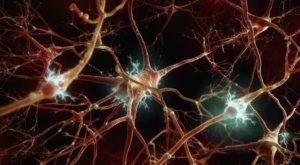 Сифилис нервной системы - симптомы и причины