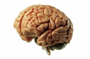Ликвородинамические нарушения головного мозга