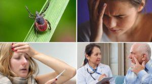 Токсоплазмозный энцефалит мозга причины