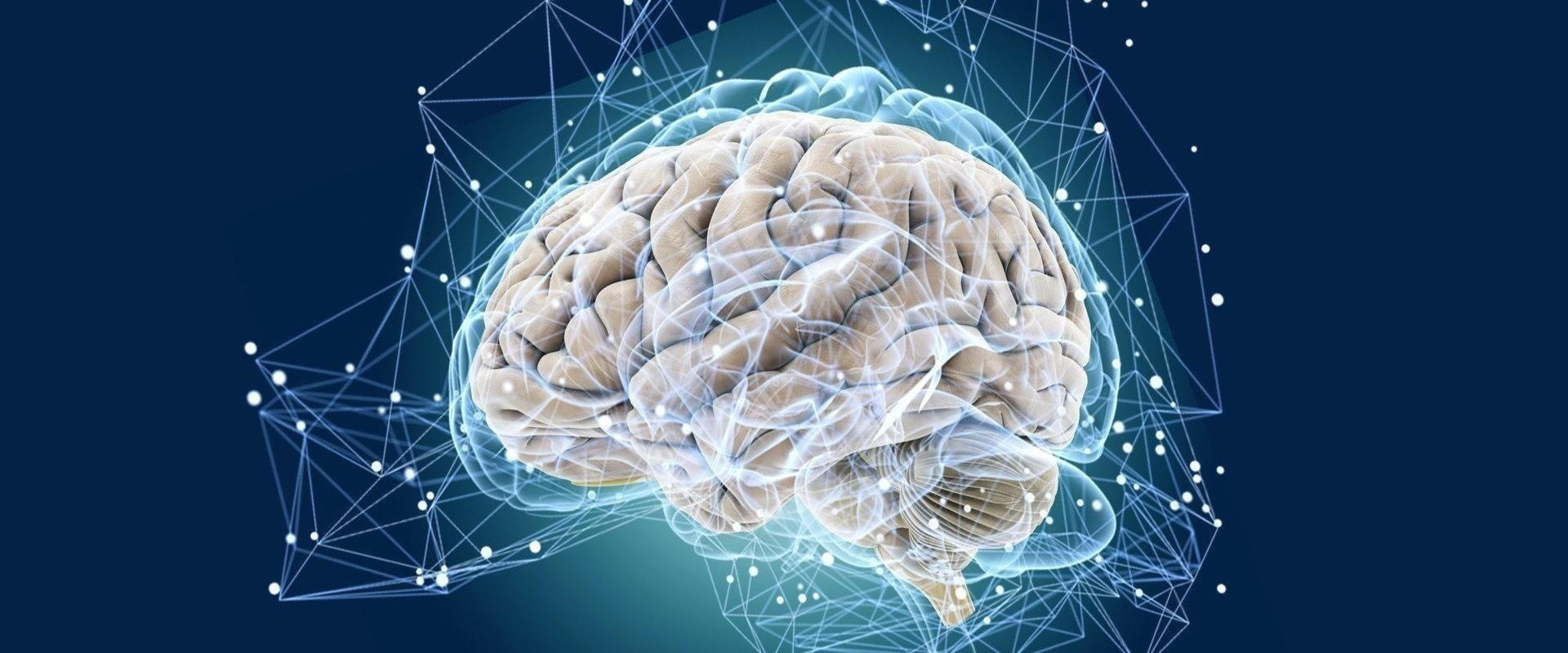 Корковая атрофия головного мозга