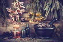 Фитотерапия. Альтернатива традиционным лекарствам